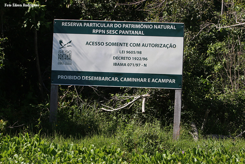 Reserva Natural do Sesc no Estado do Mato Grosso equivale a 1% da área do Pantanal